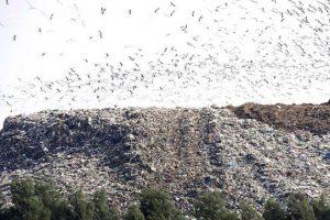"""""""La cantidad de residuos enterrados no para de aumentar"""""""