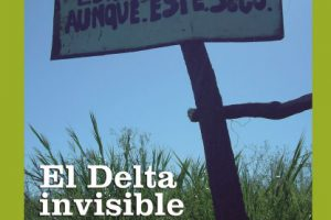 El Delta invisible