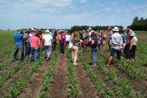 Capacitación sobre cultivos extensivos agroecológicos