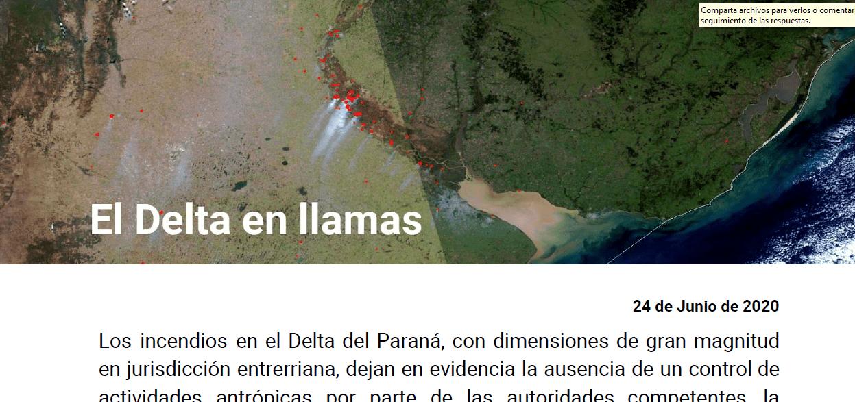 El Delta en llamas: Documento de organizaciones