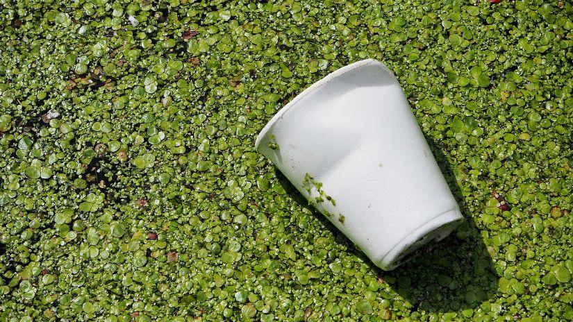 Fuerte rechazo al proyecto de ley de fomento a los bioplásticos