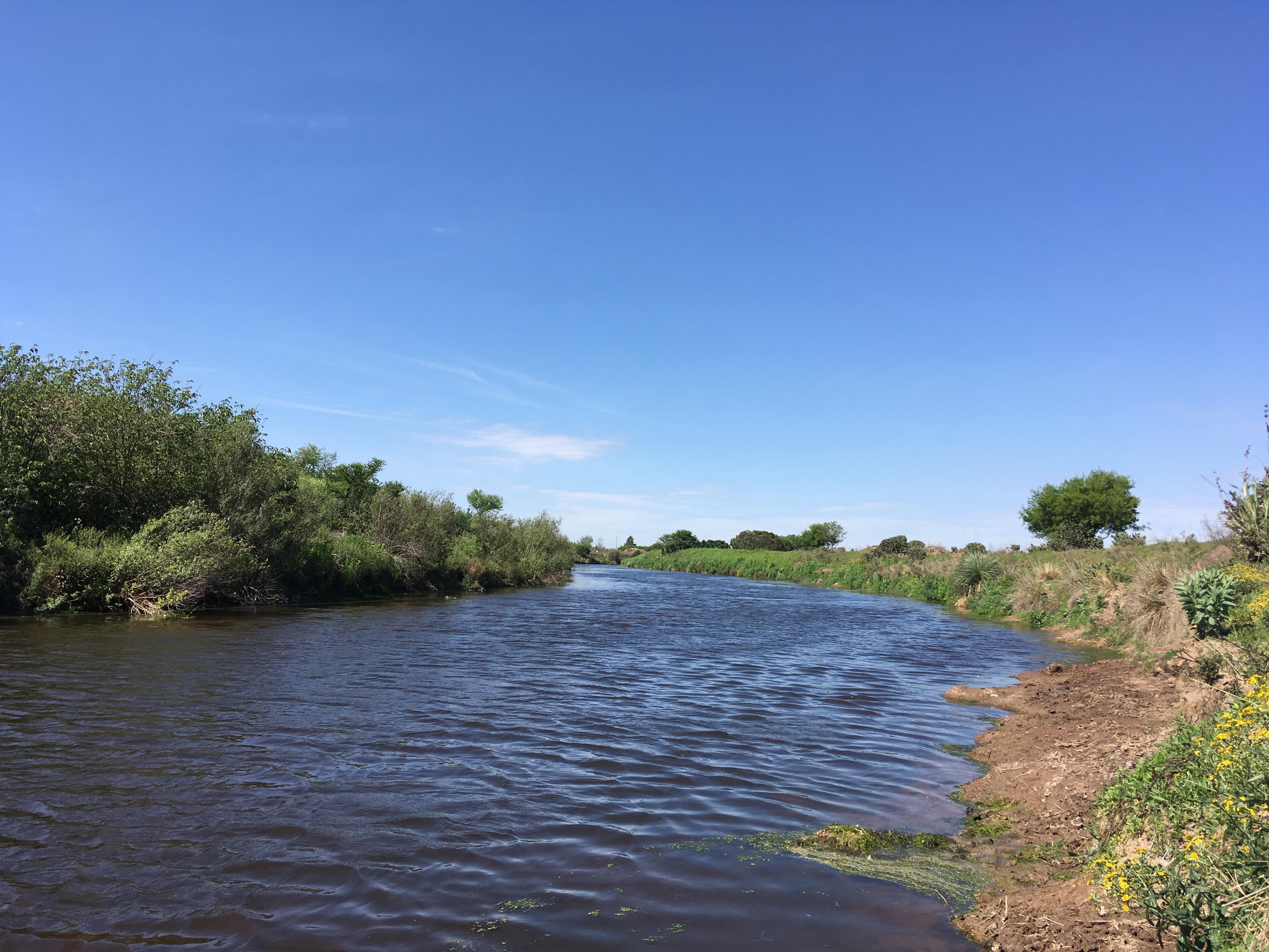 Humedales pampeanos: la cuenca del Arroyo Ludueña. Mirá la charla completa