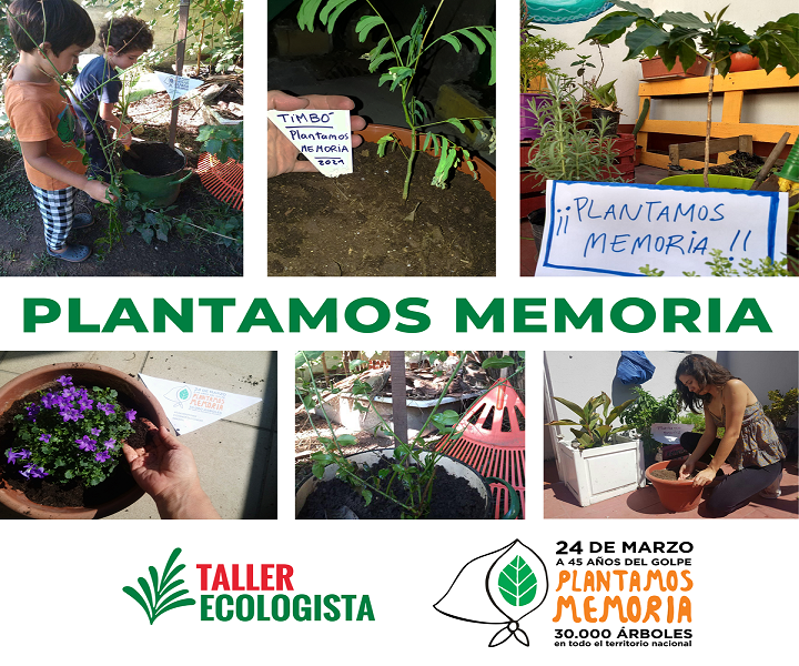 Plantamos memoria: Entrevista en Radio Nacional