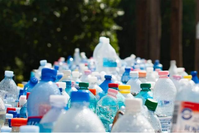 Faltan normativas que legislen sobre el reciclaje de envases